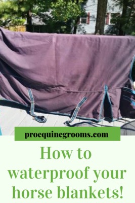 Pro Equine Grooms How To Re