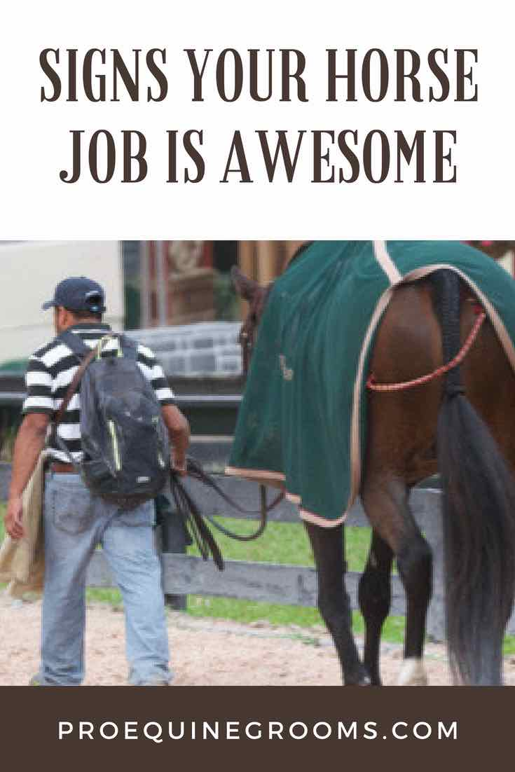 Signs Your Horse Job Is AWESOME!