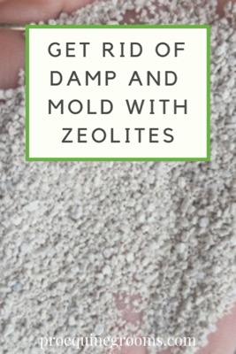 Pro Equine Grooms - Get Rid of the Damp and Mold in Your Barn!
