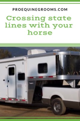 Pro Equine Grooms What You Need To Travel Across State Lines With Your Horse