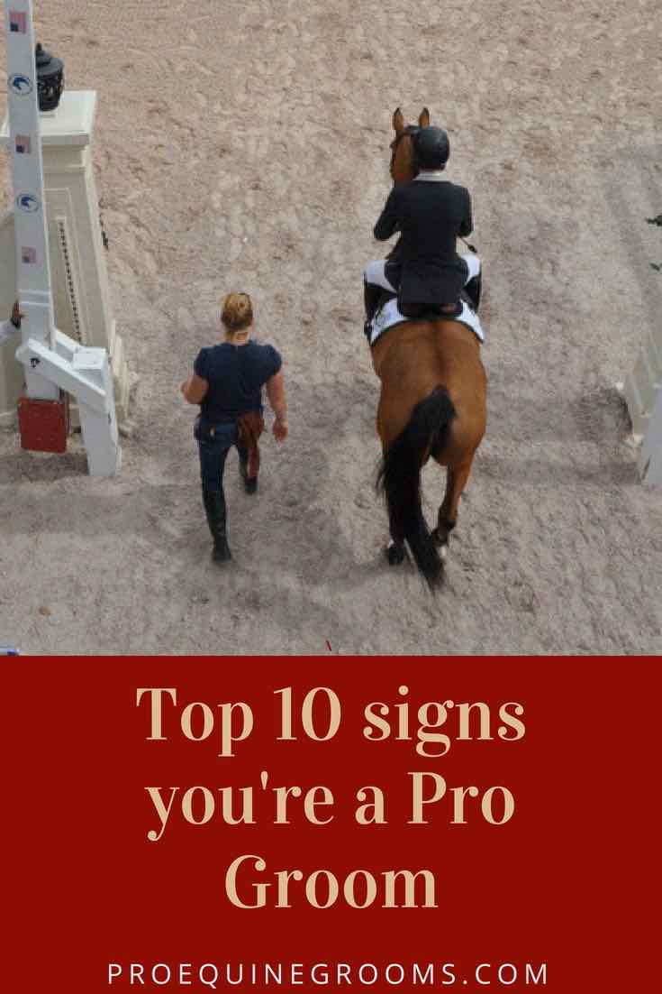 Top 10 Signs You Know You're a Horse Groom!