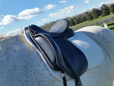 Pro Equine Grooms - Tips for Selling Your Used Horse Tack