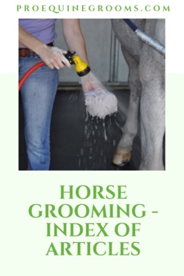 Pro Equine Grooms - Horse Grooming - List of Articles