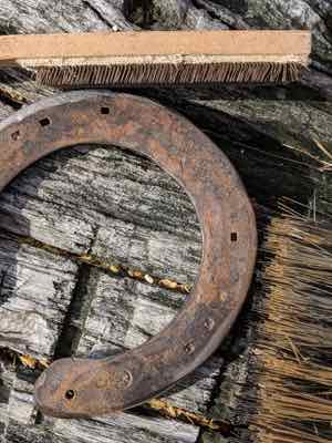 How to Clean and Preserve Your Horse's Rusty Horseshoe!