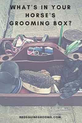 The Horse Grooming Kit