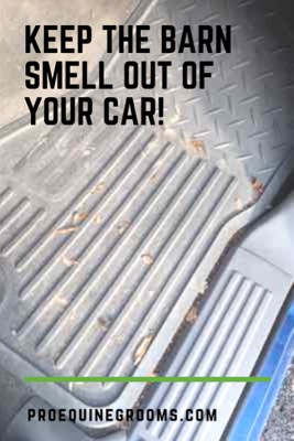 Pro Equine Grooms - How To Keep Your Car From Smelling Like
