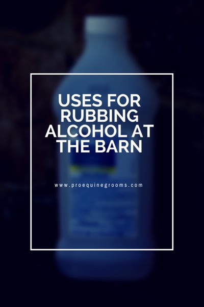 Pro Equine Grooms - The Many Uses of Rubbing Alcohol at the Barn