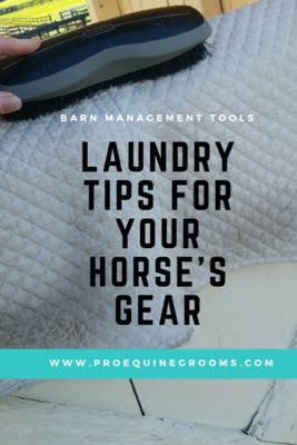 Laundry Tips for Your Horse's Tack