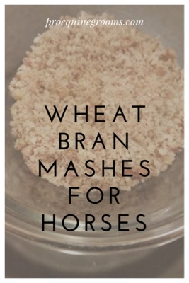 Pro Equine Grooms - Wheat Bran Mashes for Horses - Pros and cons!