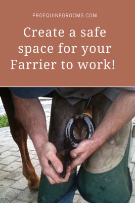 Create a Safe Area for Your Horse's Farrier to Work!